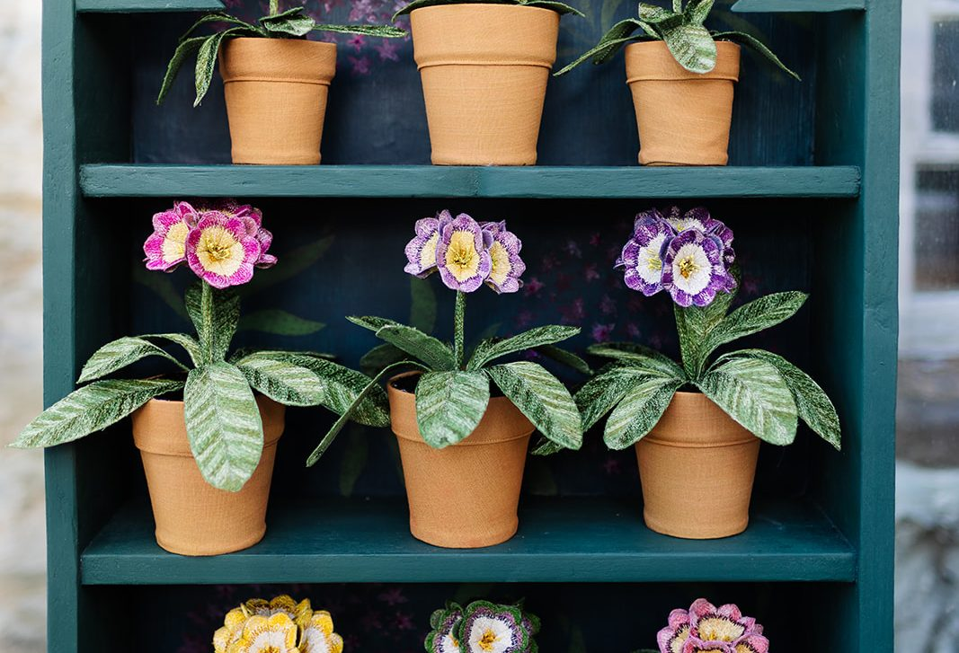 Auricula Theatre by Corinne Young (Photography by the Happy Brand Photographer)