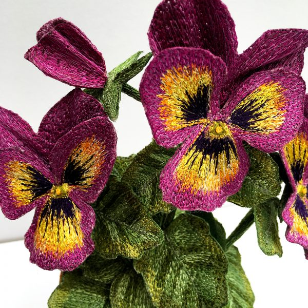 Pansy Pink Tricolour (Detail)